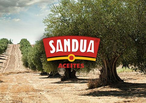 logo Sandua